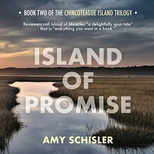 Island of Promise audiobook cover art