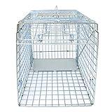 Best Raccoon Traps - JungleA 32-inch Large 1-Door Live Animal Trap Catch Review