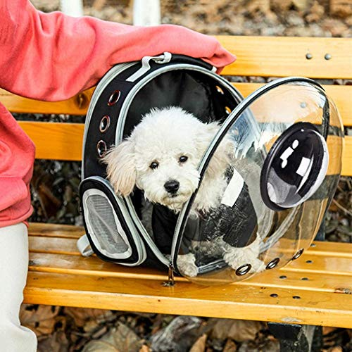 JJYGONG Bolsa de Portador de Mascotas Pet Pet Carrier Pet Expandable Pet Burbuja IA Panoránica Transparente Plegable con 9 Orificios de Ventilación Transpirable Portátil Portátil Moc