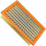 HAYATEC Filtro plegado plano compatible con Kärcher NT 35/1 NT 25/1 Ap, NT 35/1 NT 361 NT 45/1