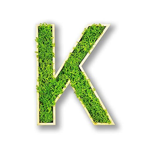 Moosly® frischer Moosbuchstabe selbstklebend made in Germany Moosealphabet Moosbild Mooswand Islandmoosbild Islandmoos Rentiermoos Wanddeko Pflanzenbild (ca. 12 x 6 cm, grün mit Birkenholz) (K)