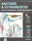 ANATOMÍA & ESTIRAMIENTOS. Guía de estiramientos. Descripción anatómica (Color) (Deportes)