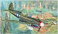 トランペッター 1/32 P-40N ウォーホーク プラモデル 02212