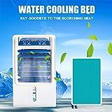 水冷マットレス夏冷凍は、サイレントエアコン扇風機マットレス、屋内、車、旅行、キャンプに適して夏のDC 12V入力で電気冷却パッド - ホームのため、寮の部屋、アパートやホステル、夏のエアコンのパッドでクール (1.6x1.4m)