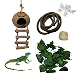 Tfwadmx Reptile Hide Coconut with Ladder,Natural...