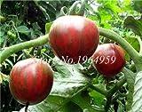 Pinkdose 100 Stücke Regenbogen Klettern Tomaten Bonsai Seltene Tomatenpflanze Bonsai Organisches Gemüse & amp; Obstbonsai, Topfpflanze für den Hausgarten: 2
