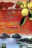 Im Tal der Zitronenbäume: Roman