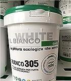BIANCO 305 LT.1
