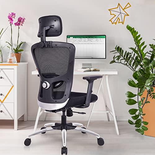 Green Soul® ''Jupiter-Superb'' High-Back Mesh Home & Office Ergonomic Chair with Multi-Tilt Lock Mechanism, 2-Dimensional Adjustable Armrest & High Comfort Seating (Full Black)