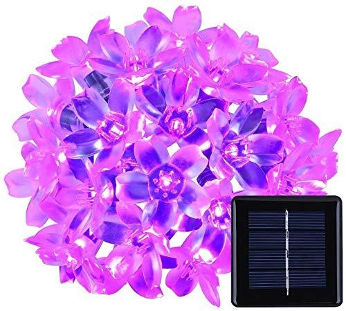 Catena Luminosa,SUAVER 21ft 50LED Luci Stringa solare Luci in fiore Ghirlanda LED Impermeabili Luci Decorative per Porta Giardino Patio Balcone Corridoio Feste 8 Modalità (Viola)