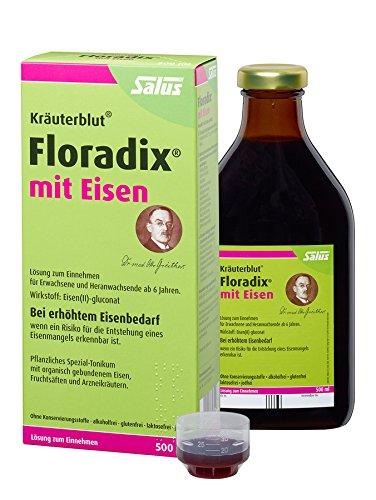 Salus Kräuterblut Floradix mit Eisen, 3er Pack (3 x 500ml)