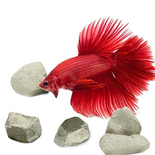 SunGrow Mineralische Steine für Kampffische, Fungiert als Rückzugs- und Paarungsort, Hilft dabei das Stresslevel ihrer Fische zu senken, 3-6 Stück pro Packung