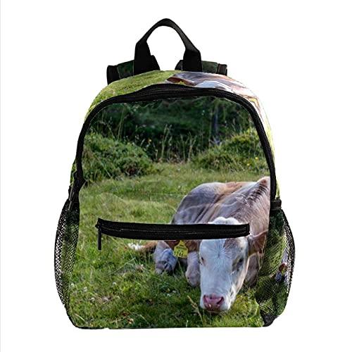 Mochila para niños y niñas de animales de vaca prado lechero, ligera, mochila para niños pequeños, mochila escolar duradera y casual para niñas y niños de 25,4 x 10 x 30 cm
