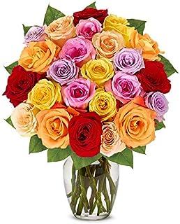 Sponsored Ad - Flowers - Two Dozen Rainbow Roses (Free Vase Included)