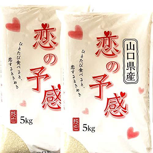 恋の予感 無洗米 10kg 一等米 山口県産