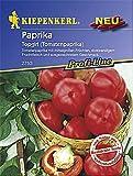 Paprikasamen - Paprika Topgirl ( Tomatenpaprika ) von Kiepenkerl