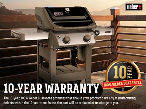 Weber 48010001 Spirit E-210 2-Burner Natural Gas Grill, Black