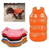 Rantow 秋冬のペットの犬の猫の服コート、7色のウォームダウン古典的なペットのダウンジャケットテディ、ヨークシャーテリア、チワワ、ポメラニアの (M, Orange)