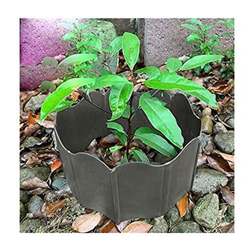 20Pcs Mini Lawn Edging Garden Edging Plastic Lawn Border Fence Garden Grass Edge Fence Garden Border Edging Kit Garden Picket Fence Panels Plant Bordering Flower Bed Grass Decor Gardening Tools