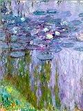 Poster 60 x 80 cm: Seerosen von Claude Monet/Bridgeman