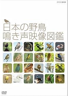日本の野鳥 鳴き声映像図鑑 DVD【NHKスクエア限定商品】