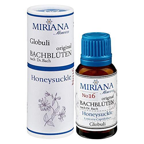MirianaFlowers Honeysuckle 20g Bachblüten Globuli