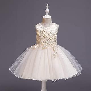 Luxury Princess Dress Children Princess Skirt Girls Dress Catwalk Sleeveless Dress with Flower Embroidery Beading Wedding Festival Costumes ryq (Color : Champagne, Size : 140cm)