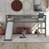 Twin Loft Bed with Slide for Kids, Wood Low Profile Kids Mini Loft Bed Twin Size with Ladder, No Box Spring Needed (Gray)