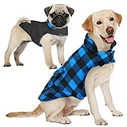 Dog jacket reversible waterproof windproof