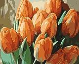 CJSZSD Pintar por Numeros Tulipán Amarillo DIY Cuadro al óleo con números para Kit de Pintura al óleo Digital para Adultos y niños de Lienzo decoración para el hogar 40x50cm(Sin Marco)
