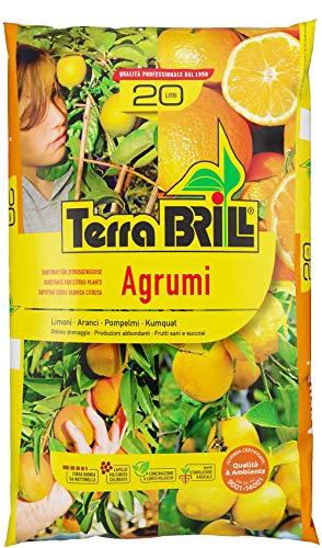 Bril Terriccio per agrumi 45 lt Terra per agrumi Limoni aranci pompelmi Kumquat