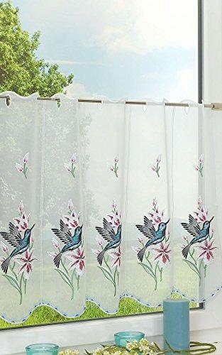 Plauener Spitze Scheibengardine Kolibri (Bx H) 80cm * 55cm blau/pink