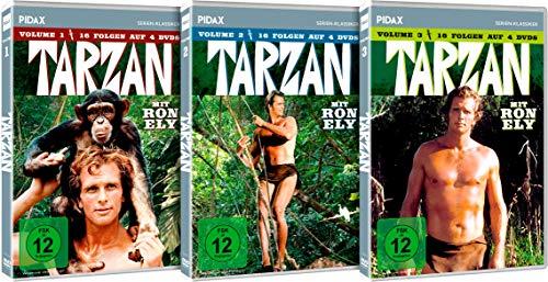 Tarzan - Gesamtedition / Die komplette 48-teilige Serie mit Ron Ely auf 9 DVDs (Pidax Serien-Klassiker)