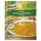 Knorr Florida Sopa de Verduras de Primavera 48g