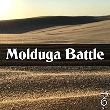 "Molduga Battle (From ""The Legend of Zelda: Breath of the Wild"")"
