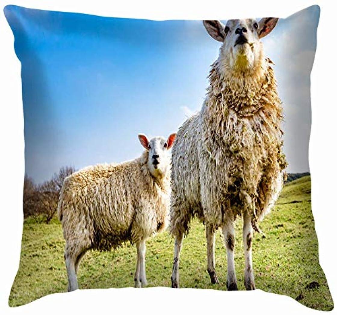 民兵ドール転倒面白い群れ見つめている羊動物をのぞき込む野生動物農業公園屋外投球枕カバーホームソファクッションカバー枕カバーギフト45x45 cm