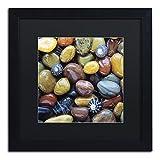 Shells & Pebbles Artwork by David Evans, 16 by 16', Black Frame, Black Matte