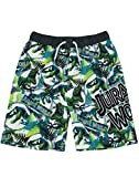 Jurassic World Swim Shorts T Rex Dinosaur Boys Pantalones de natación Trunks (9-10 Años)
