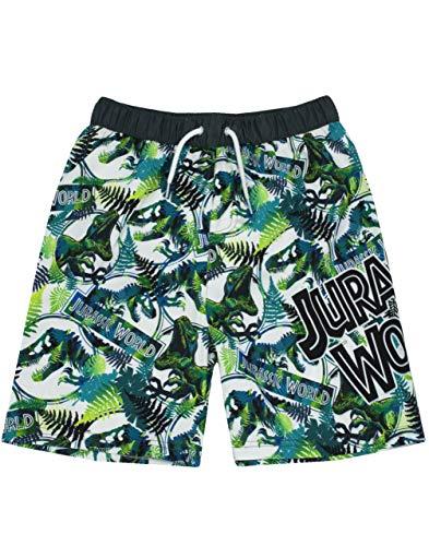 Jurassic World Swim Shorts for Boys Kids Tyrannosaurus T Rex Dinosaur Swimming Trunks Pants Childrens Green Swimwear 11 12 Years