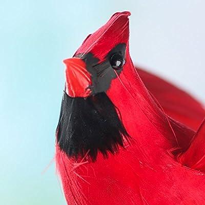 Factory Direct Craft Red Cardinal Birds