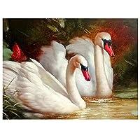 DIYペイント 数字 キャンバス油絵 白鳥の動物 キット 子供&大人用 幅16インチ x 長さ20インチ 絵筆付き アクリル顔料