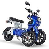 Doohan iTank eGo2 Elektroroller 1560W - 45km/h E-Scooter Elektro-Trike 2 Personen E-Roller 3-Rad Elektromobil EU-Zulassung Blau
