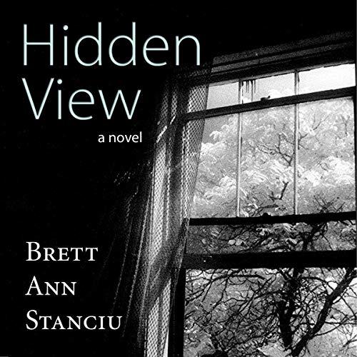 Hidden View  By  cover art