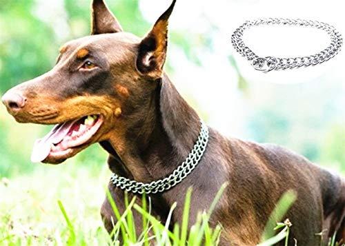 JYHY - Collar para Perro de Lujo, con Cadena en Forma de P y Cadena de Metal de Hierro y Doble Fila, para Entrenar a los Perros pequeños, medianos y Grandes