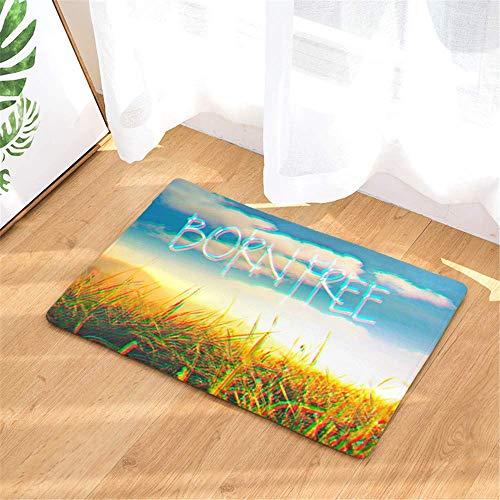 LIS HOME Naturrasen-Wildrasen-Fußmatte, ursprüngliche dauerhafte Flanell-Fußmatte, Innen- und Außentürmatte, wasserdicht