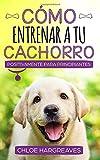 Cómo entrenar positivamente a tu cachorro para principiantes: La...