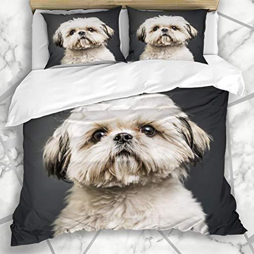 ETDWA Juegos de Fundas nórdicas Puppy Shih Tzu Studio Dark Canine Cute Dog Doggie Ropa de Cama de Microfibra con 2 Fundas de Almohada