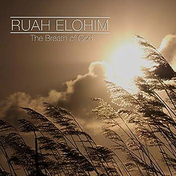 Ruah Elohim: The Breath of God