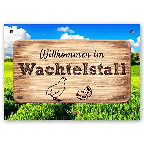 Quailzz Wachtelstall - Wachtel-Schild DIN A5 - Dekoschild mit Spruch - Wandschild - Willkommen