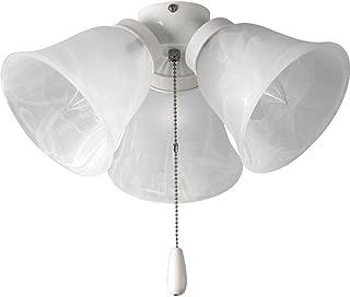 Best white ceiling fan light kit Reviews